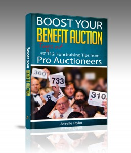 Boost Your Benefit Auction book