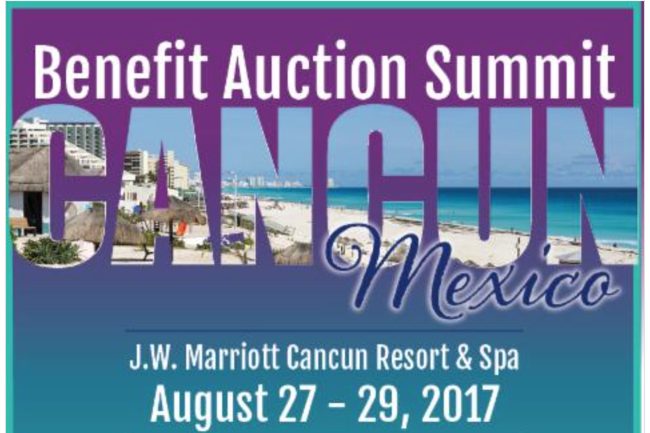 photo of Benefit Auction Summit 2017